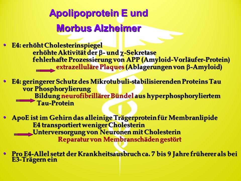 Apolipoprotein E und Morbus Alzheimer