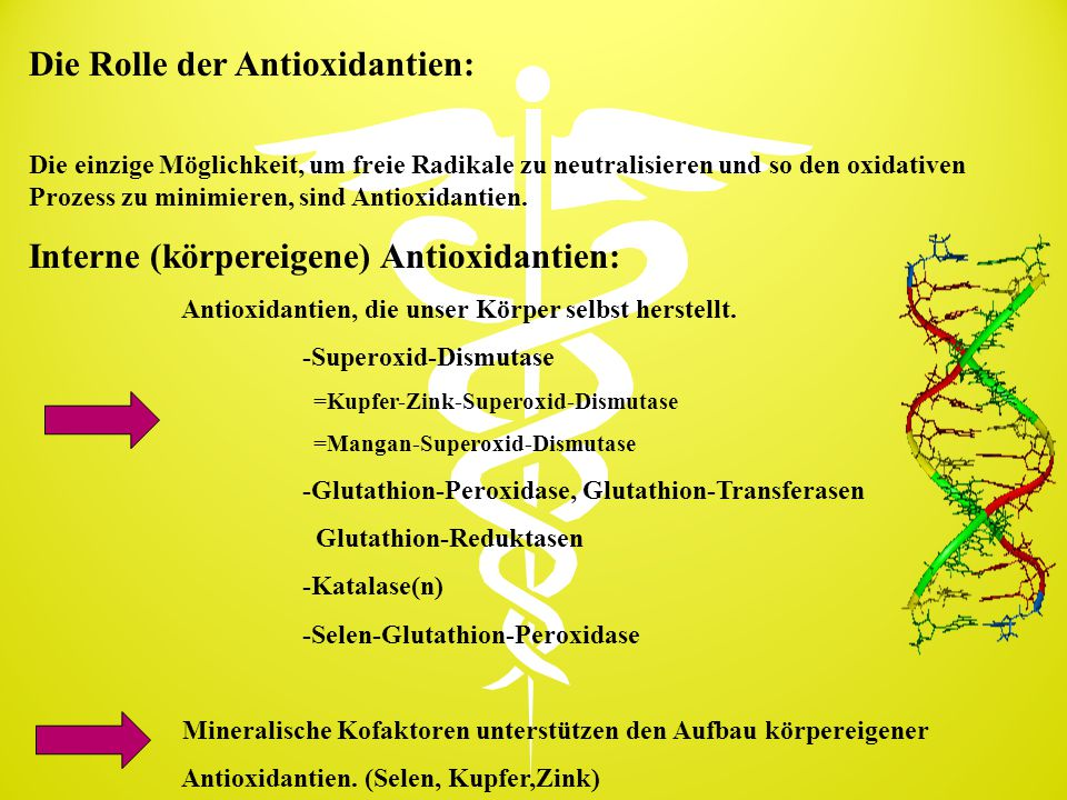 Die Rolle der Antioxidantien: