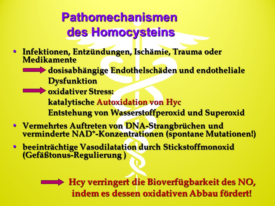 Pathomechanismen des Homocysteins