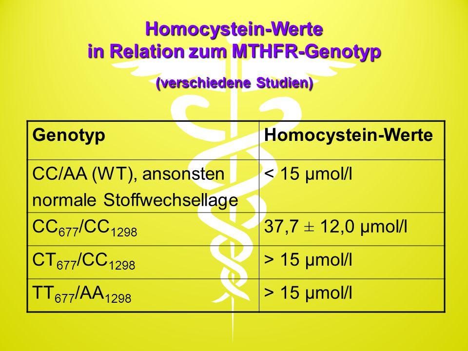 Homocystein-Werte in Relation zum MTHFR-Genotyp (verschiedene Studien)