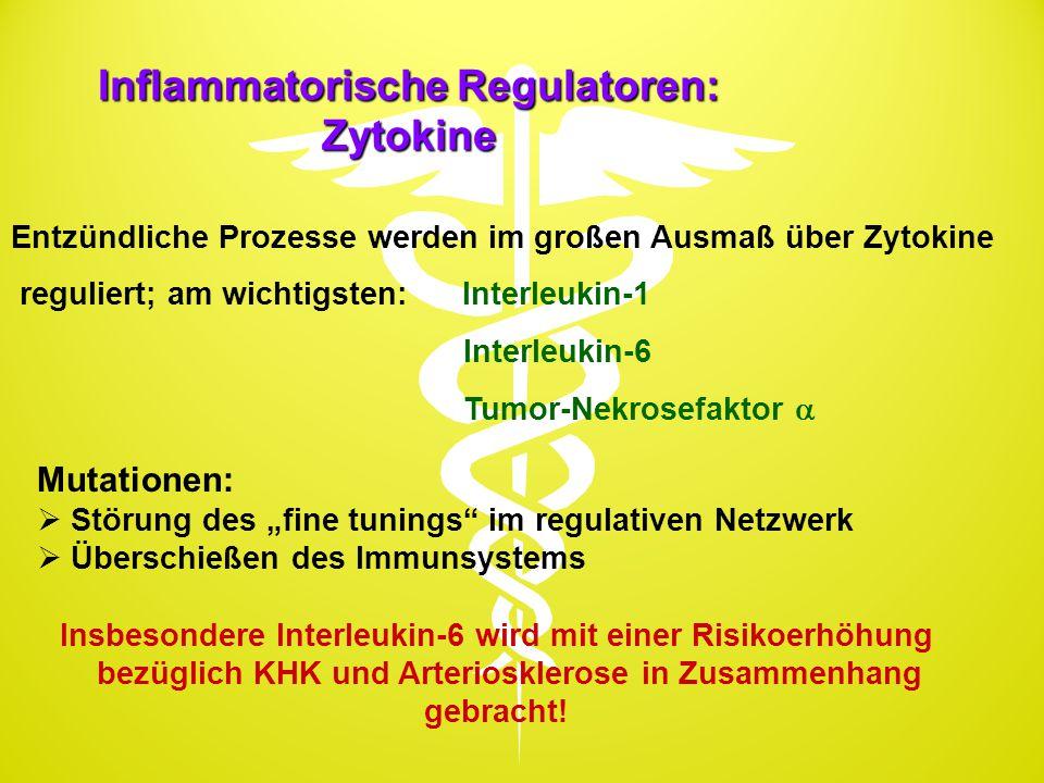 Inflammatorische Regulatoren: Zytokine