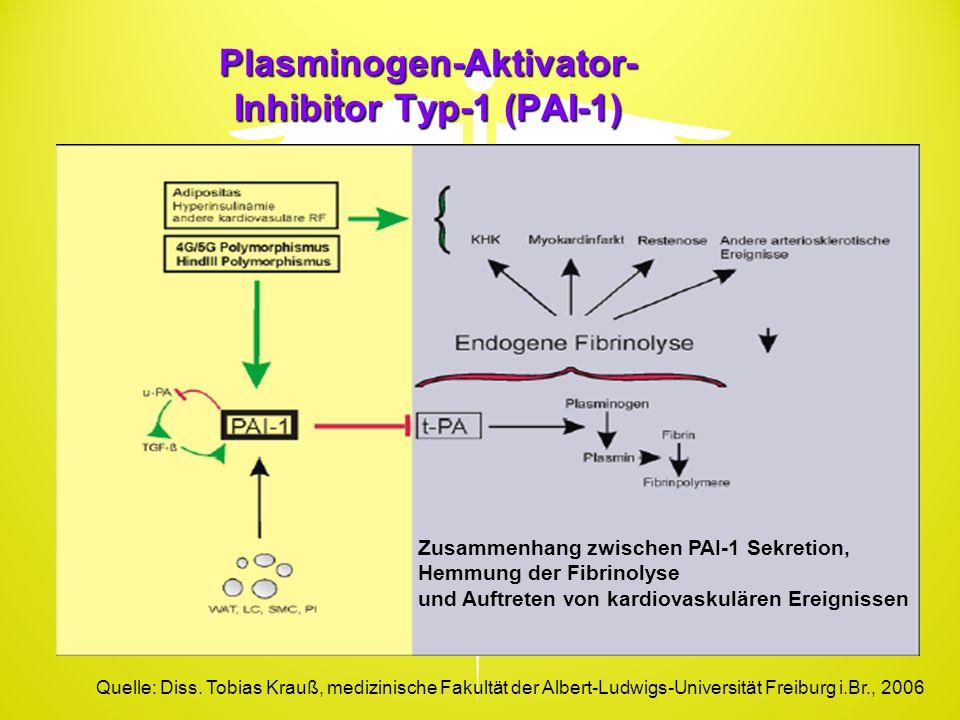 Plasminogen-Aktivator-Inhibitor Typ-1 (PAI-1)