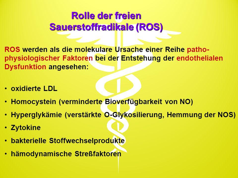 Rolle der freien Sauerstoffradikale (ROS)