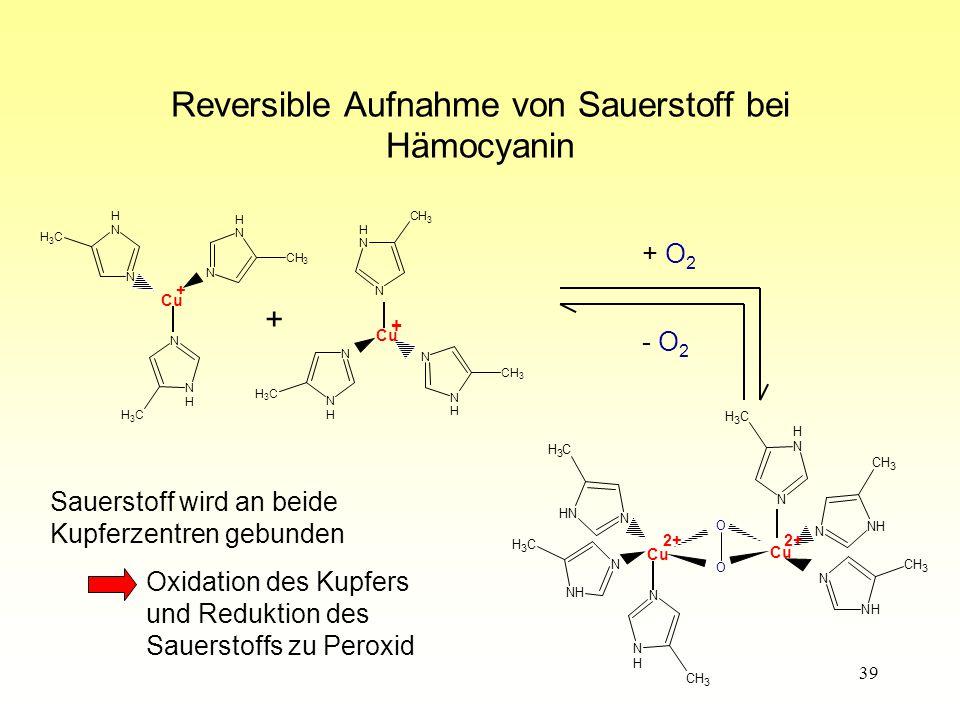 Reversible Aufnahme von Sauerstoff bei Hämocyanin