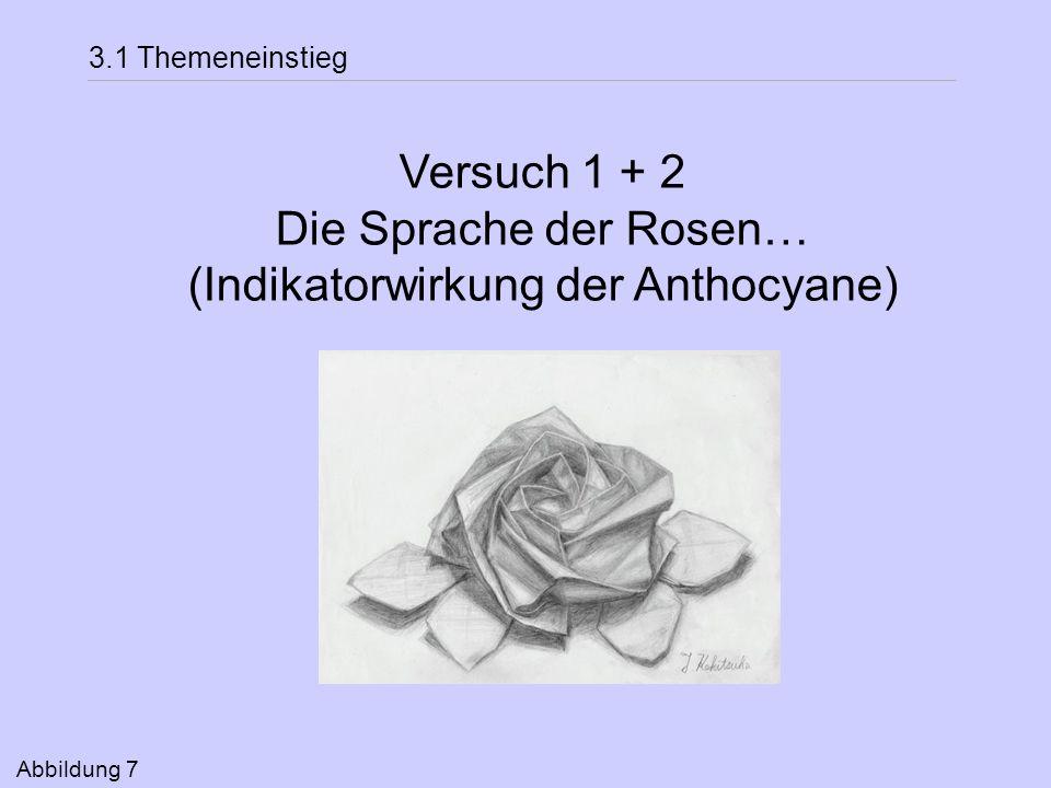 (Indikatorwirkung der Anthocyane)