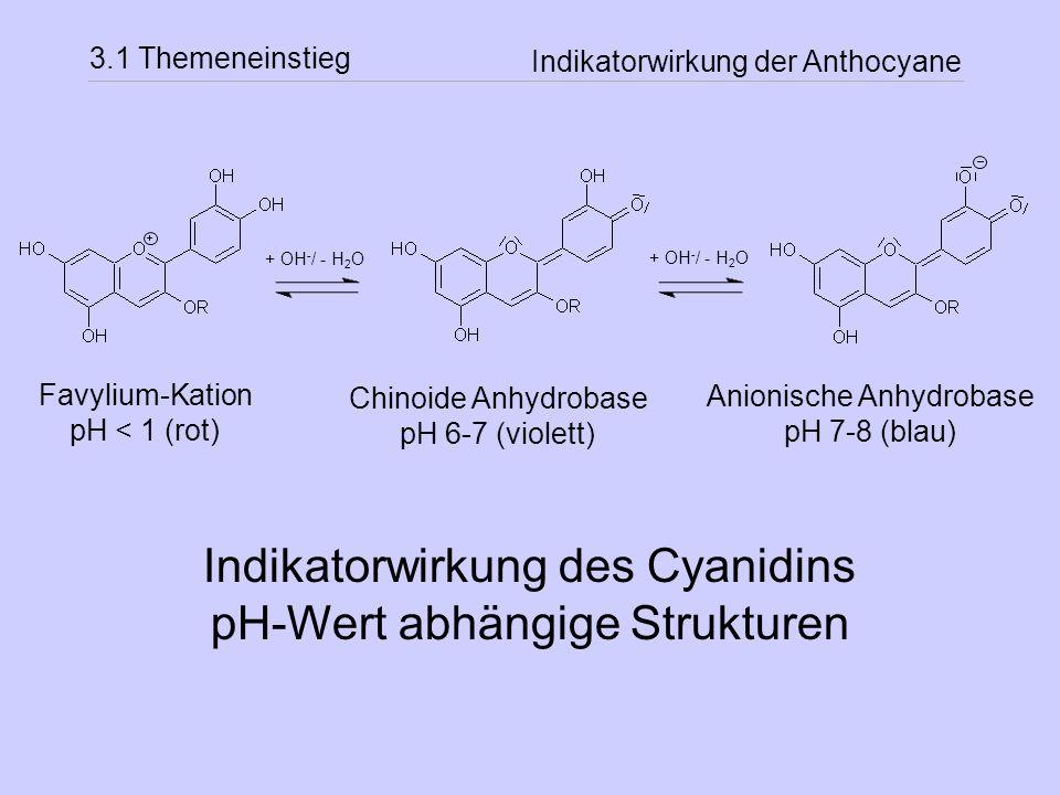 Indikatorwirkung des Cyanidins pH-Wert abhängige Strukturen
