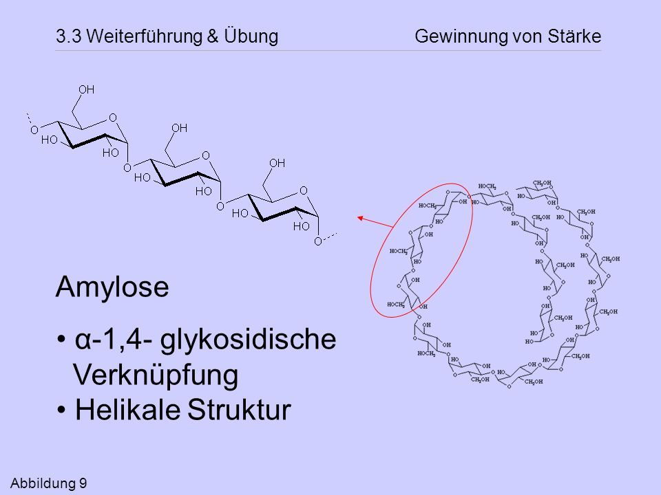 Amylose α-1,4- glykosidische Verknüpfung Helikale Struktur