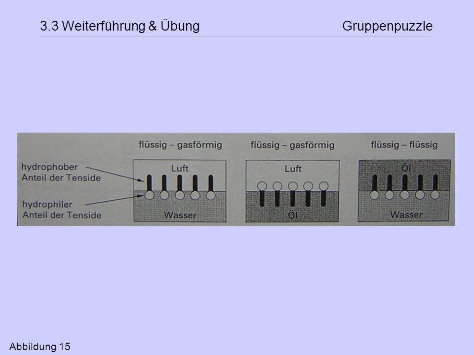 3.3 Weiterführung & Übung Gruppenpuzzle Abbildung 15