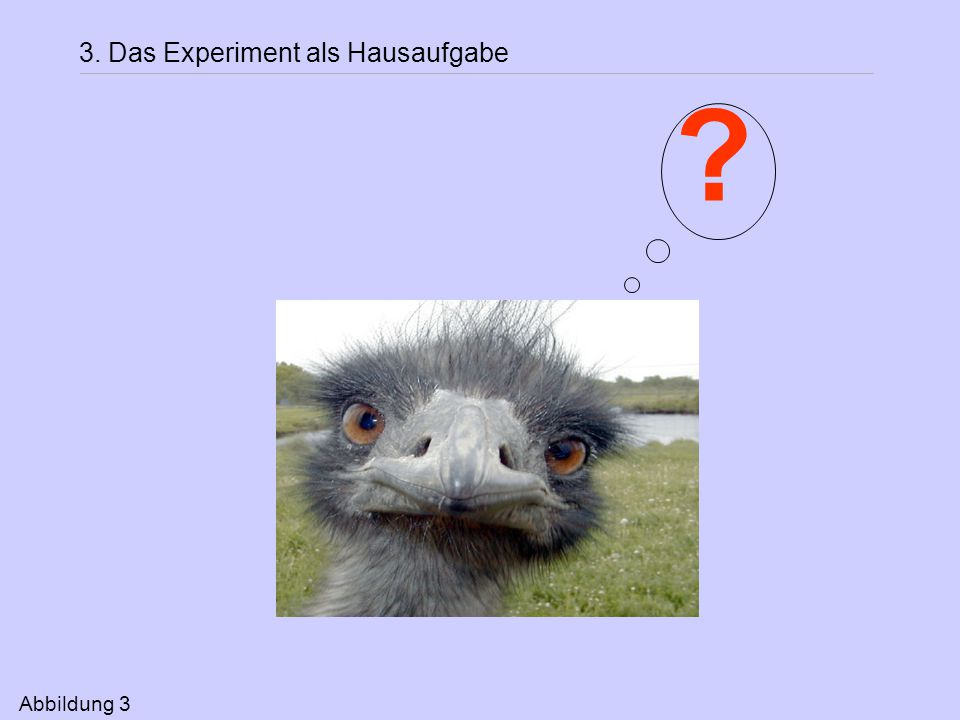 3. Das Experiment als Hausaufgabe Abbildung 3