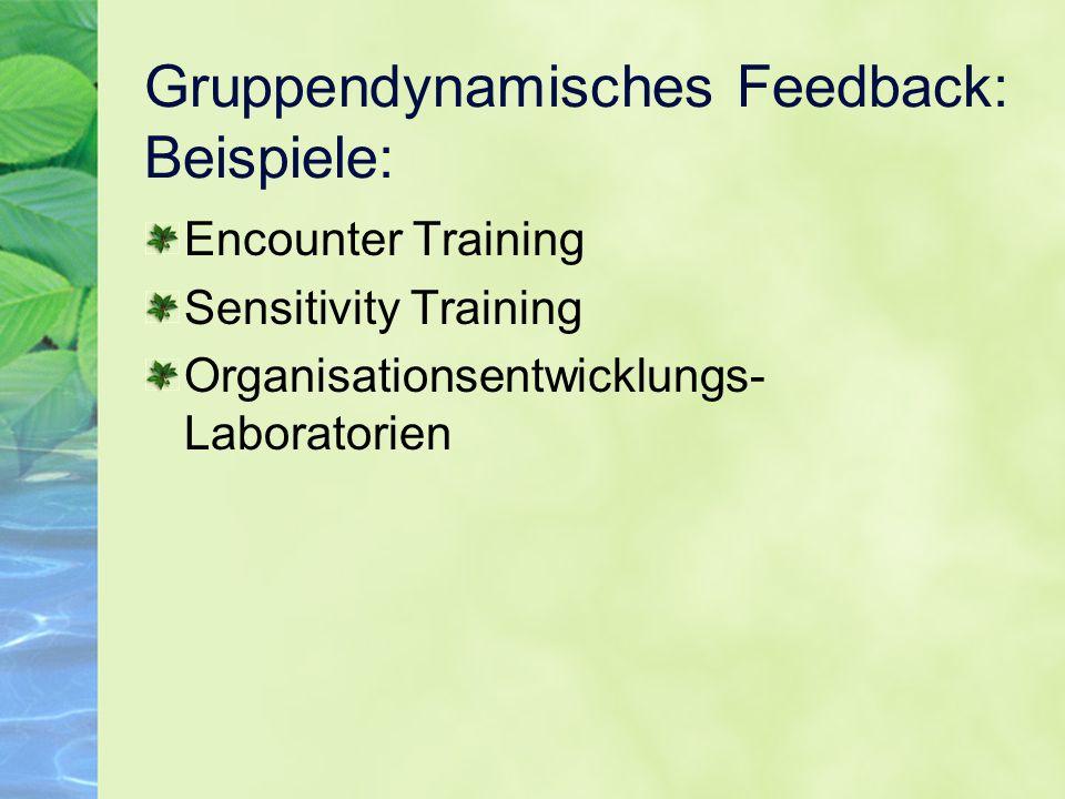 Gruppendynamisches Feedback: Beispiele: