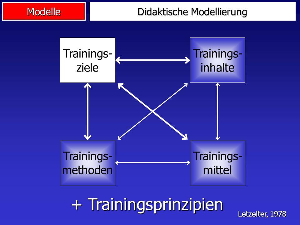 Didaktische Modellierung