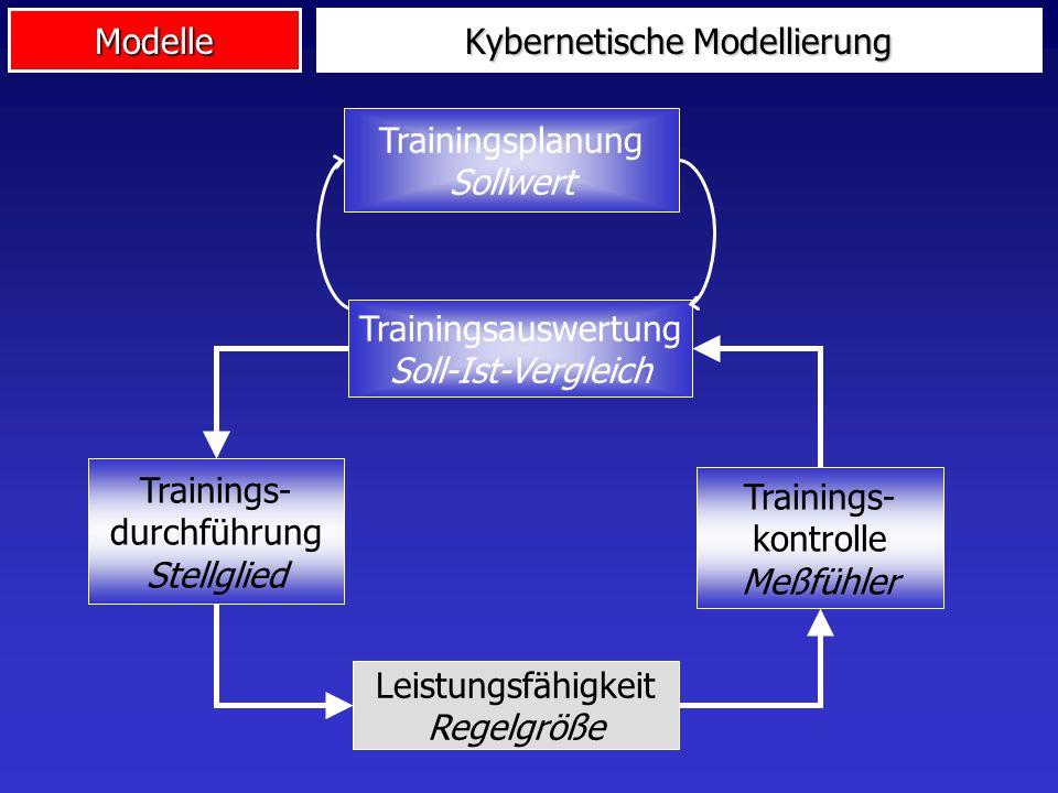 Kybernetische Modellierung