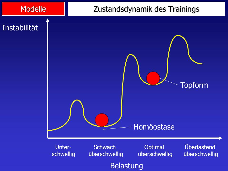 Zustandsdynamik des Trainings