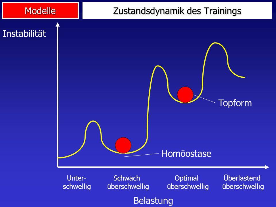 Zustandsdynamik des Trainings