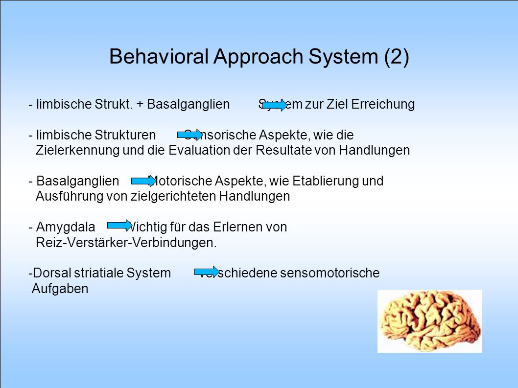 Behavioral Approach System (2)