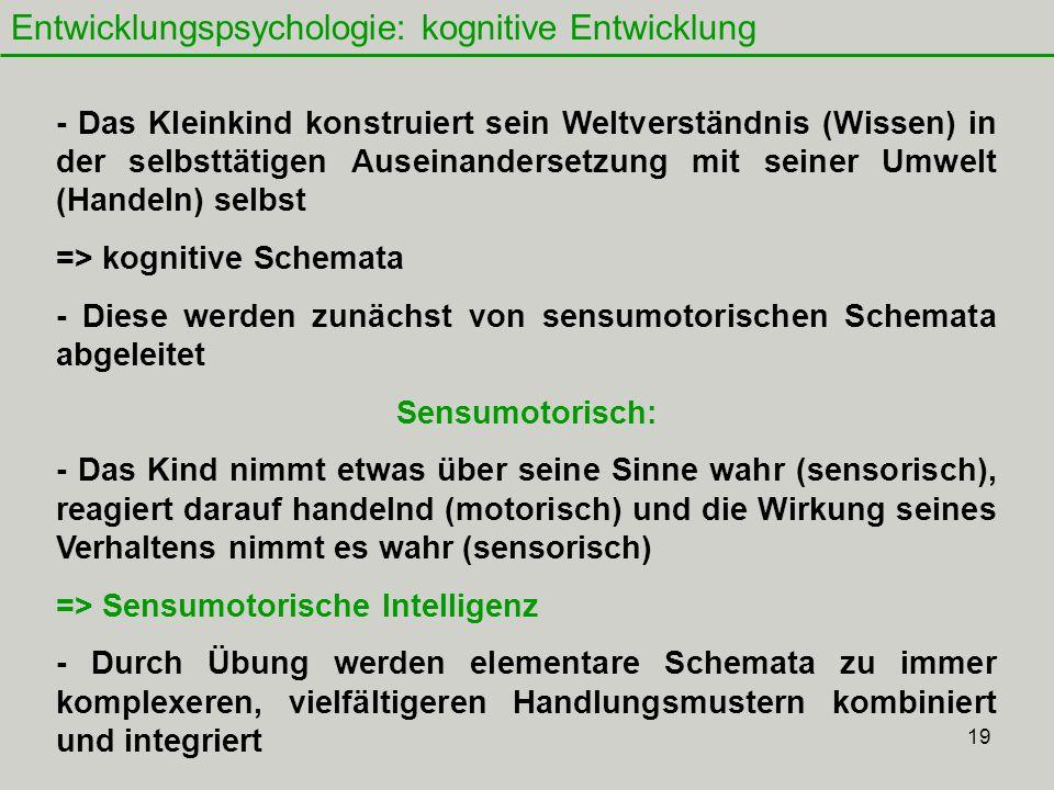 Entwicklungspsychologie: kognitive Entwicklung