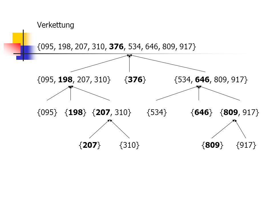 Verkettung {095, 198, 207, 310, 376, 534, 646, 809, 917} {095, 198, 207, 310} {376} {534, 646, 809, 917} {095} {198} {207, 310} {534} {646} {809, 917} {207} {310} {809} {917}