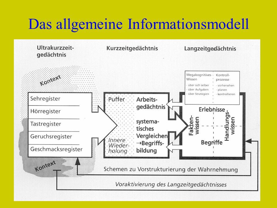 Das allgemeine Informationsmodell