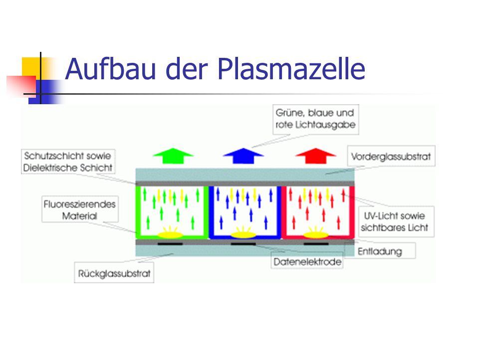 Aufbau der Plasmazelle