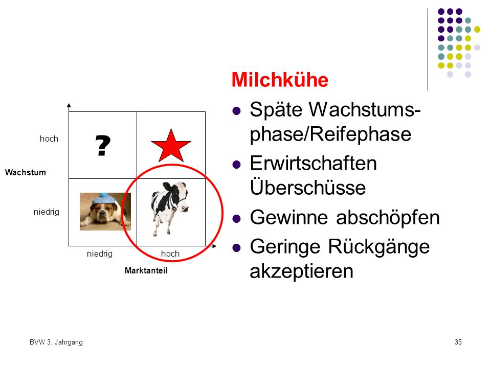 Milchkühe Späte Wachstums-phase/Reifephase