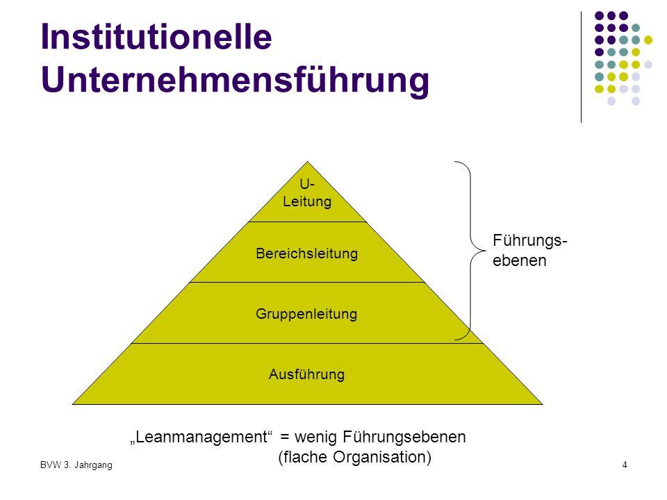 Institutionelle Unternehmensführung