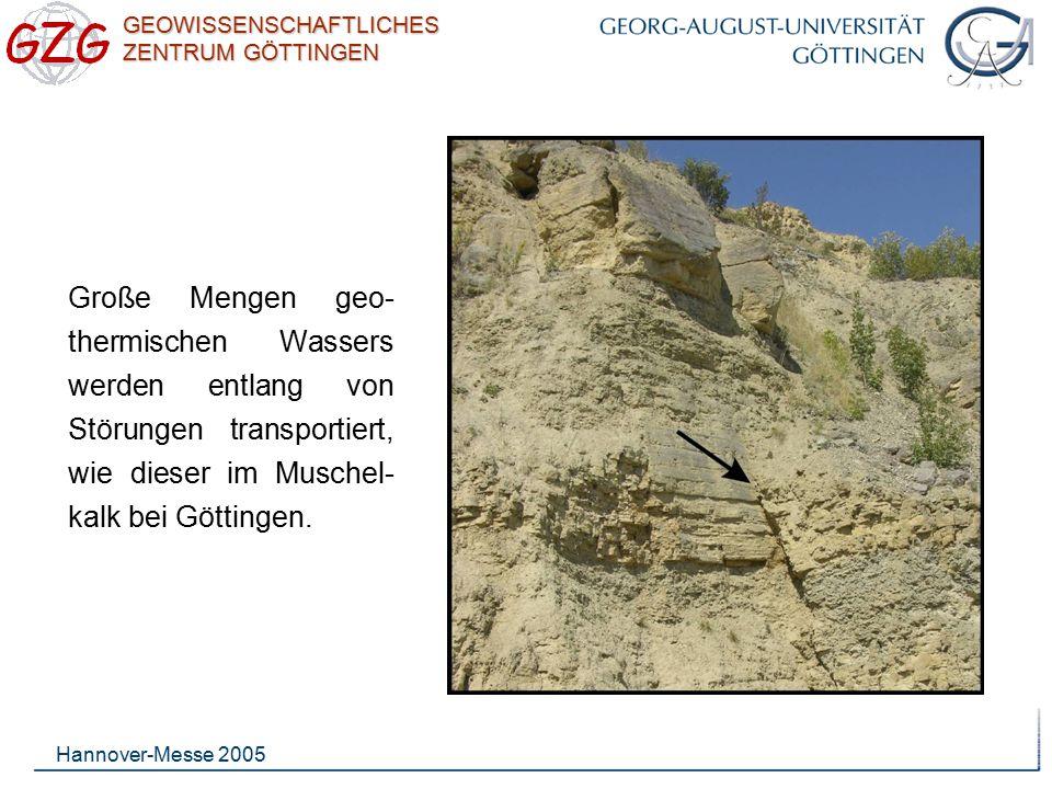 Große Mengen geo-thermischen Wassers werden entlang von Störungen transportiert, wie dieser im Muschel-kalk bei Göttingen.