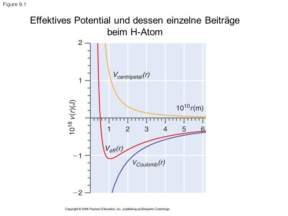 Effektives Potential und dessen einzelne Beiträge beim H-Atom