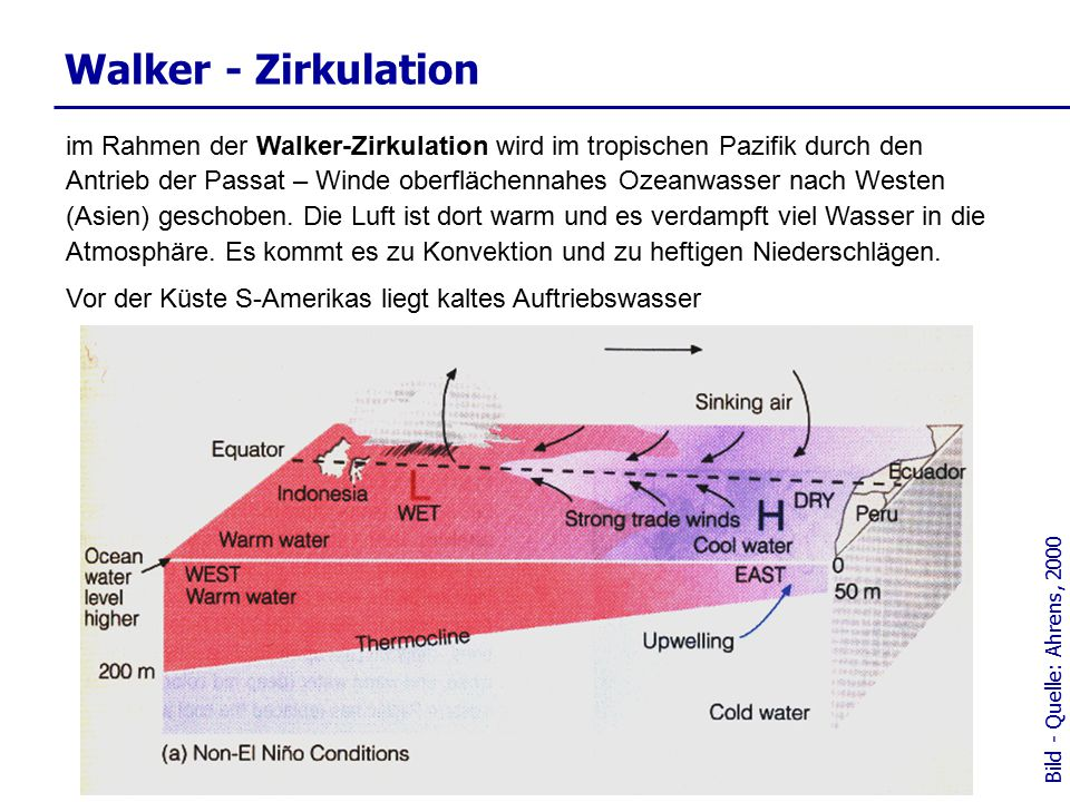 Walker - Zirkulation