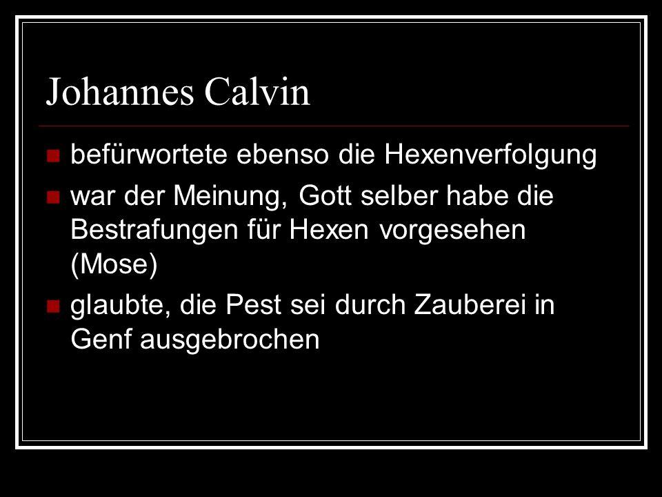Johannes Calvin befürwortete ebenso die Hexenverfolgung