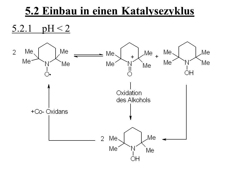 5.2 Einbau in einen Katalysezyklus