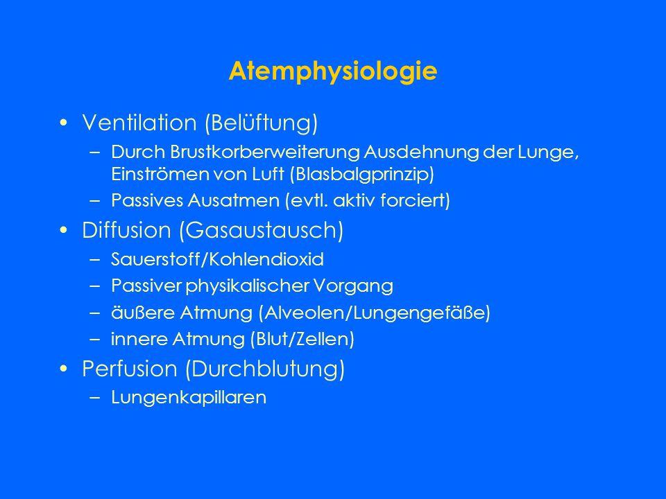 Atemphysiologie Ventilation (Belüftung) Diffusion (Gasaustausch)