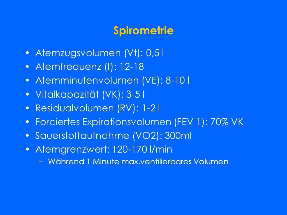 Spirometrie Atemzugsvolumen (Vt): 0,5 l Atemfrequenz (f): 12-18