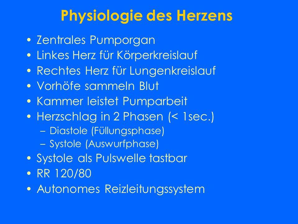 Physiologie des Herzens