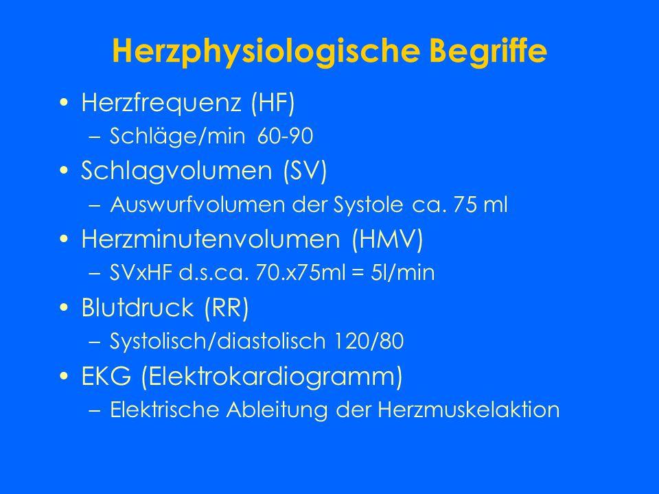 Herzphysiologische Begriffe