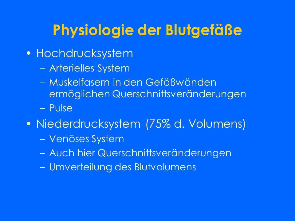 Physiologie der Blutgefäße