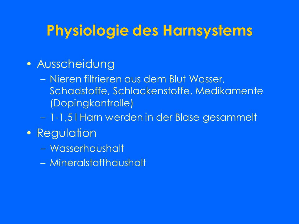 Physiologie des Harnsystems