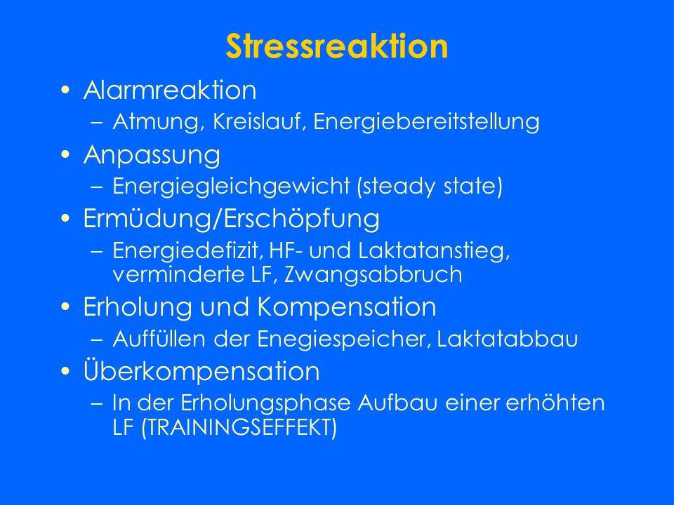 Stressreaktion Alarmreaktion Anpassung Ermüdung/Erschöpfung