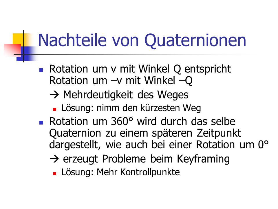 Nachteile von Quaternionen