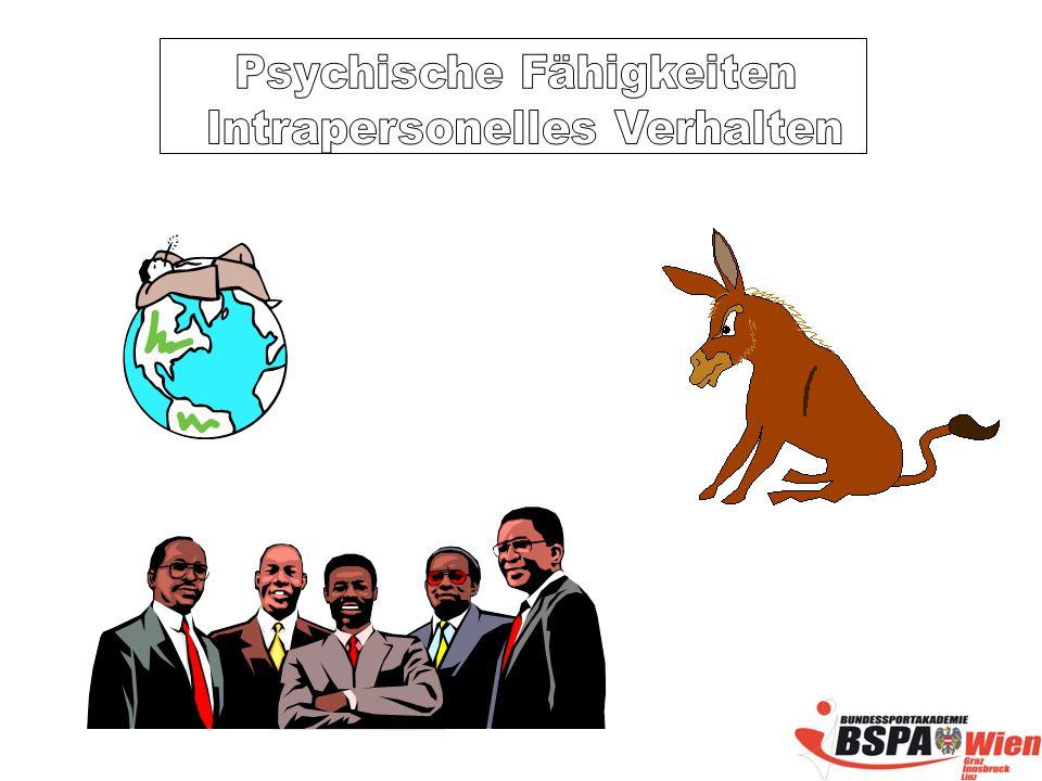 Psychische Fähigkeiten Intrapersonelles Verhalten