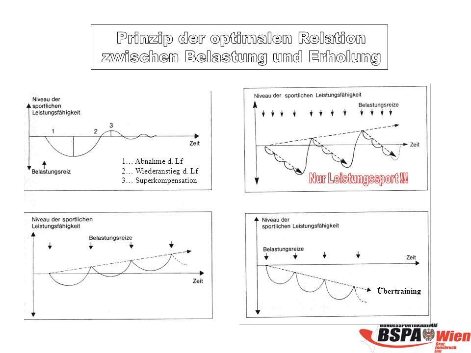 Prinzip der optimalen Relation zwischen Belastung und Erholung