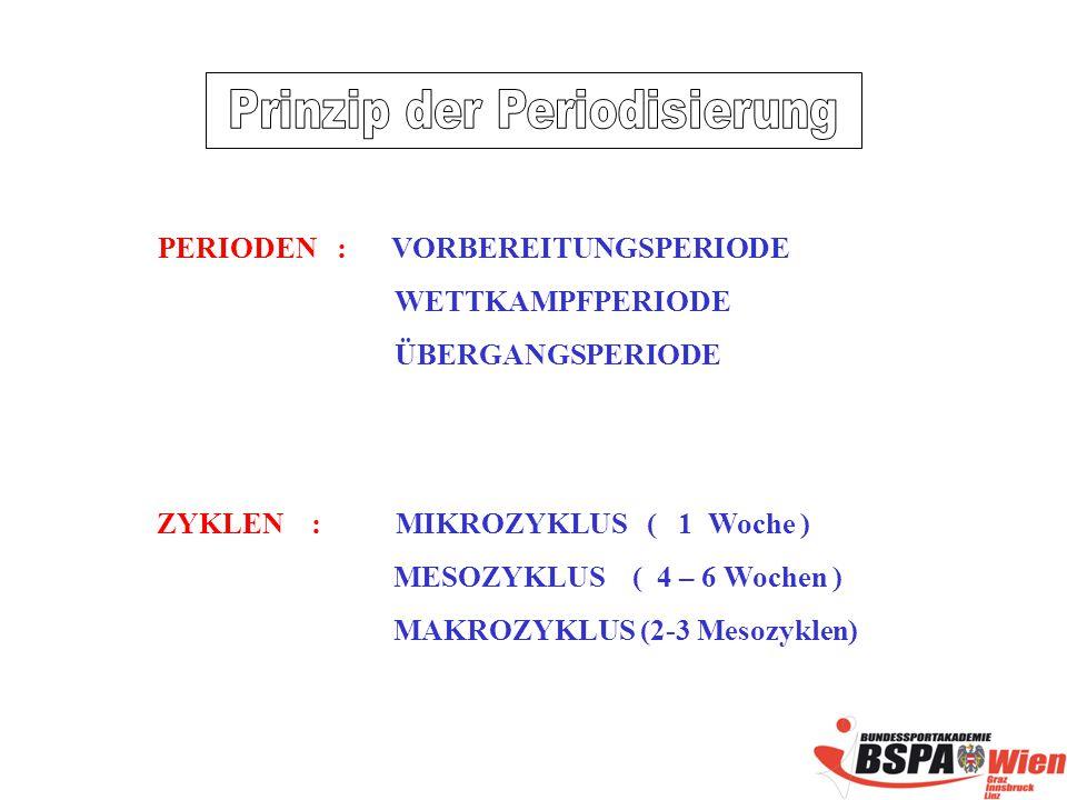 Prinzip der Periodisierung