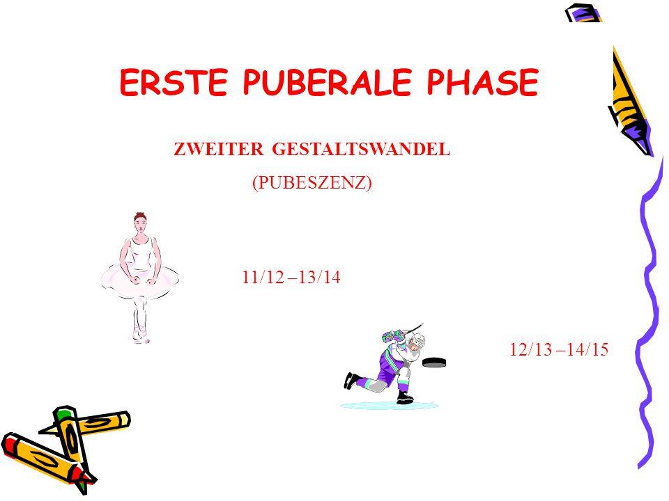 ERSTE PUBERALE PHASE ZWEITER GESTALTSWANDEL (PUBESZENZ) 11/12 –13/14
