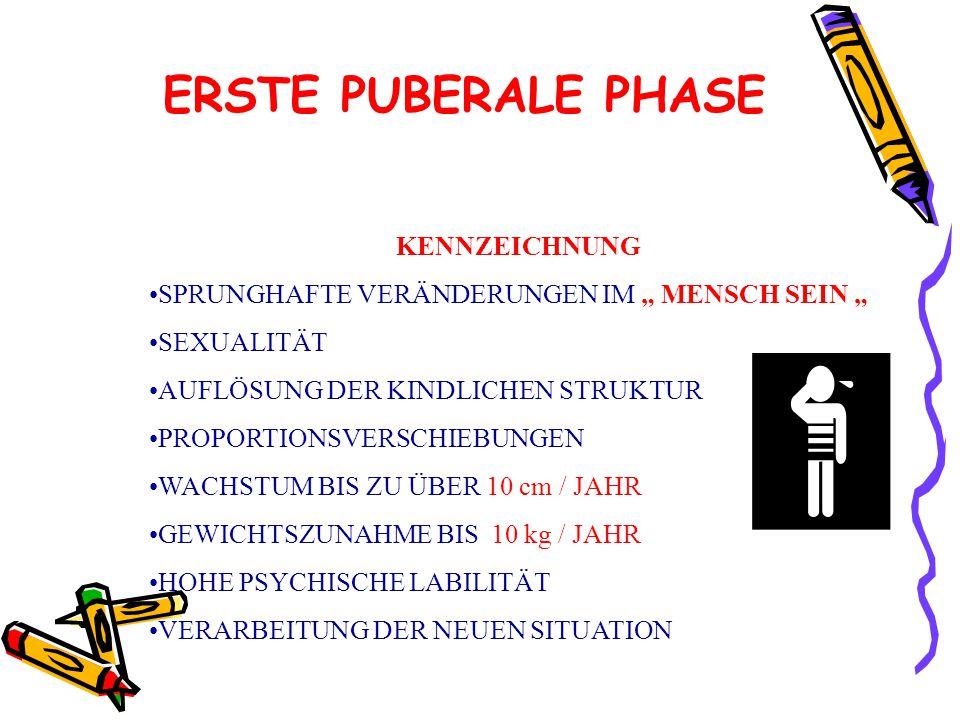 ERSTE PUBERALE PHASE KENNZEICHNUNG