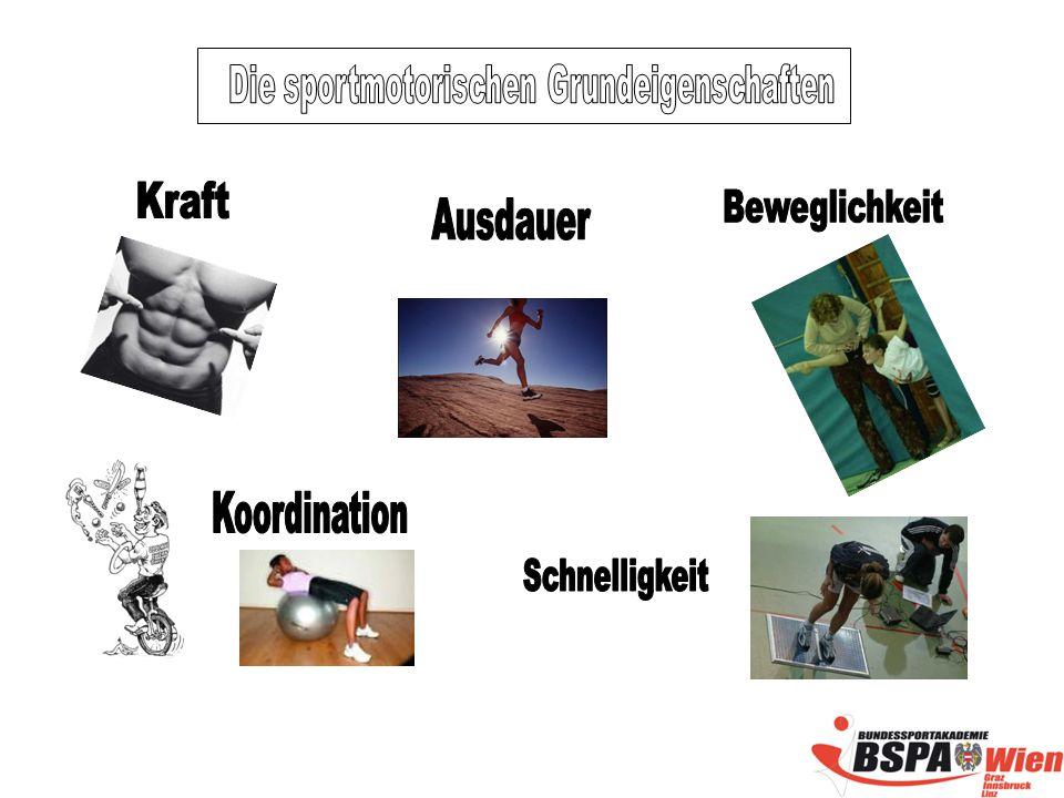 Die sportmotorischen Grundeigenschaften