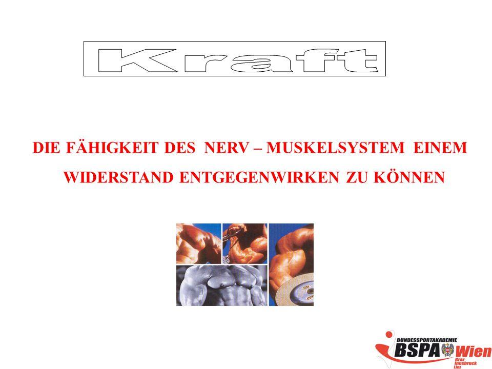 Kraft DIE FÄHIGKEIT DES NERV – MUSKELSYSTEM EINEM