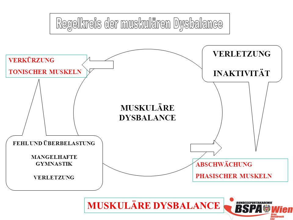 Regelkreis der muskulären Dysbalance FEHL UND ÜBERBELASTUNG