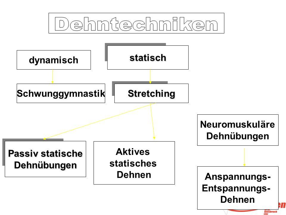 Dehntechniken statisch. dynamisch. Schwunggymnastik. Stretching. Neuromuskuläre. Dehnübungen. Passiv statische.