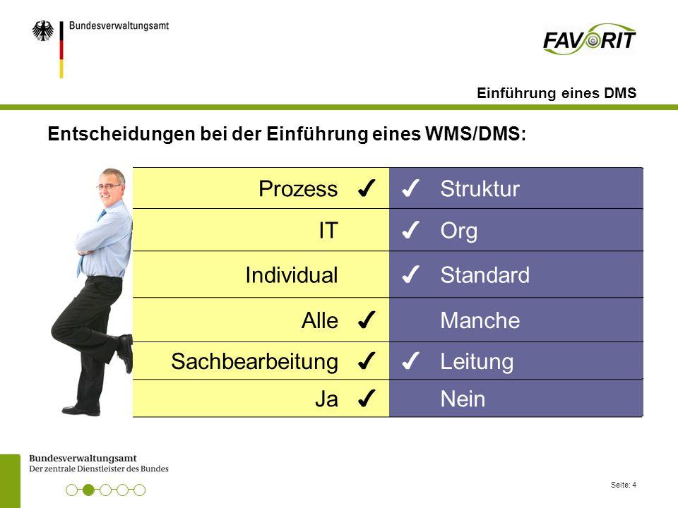 Prozess Struktur IT Org Individual Standard Alle Manche