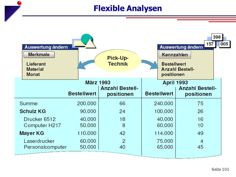 Flexible Analysen Seite 101