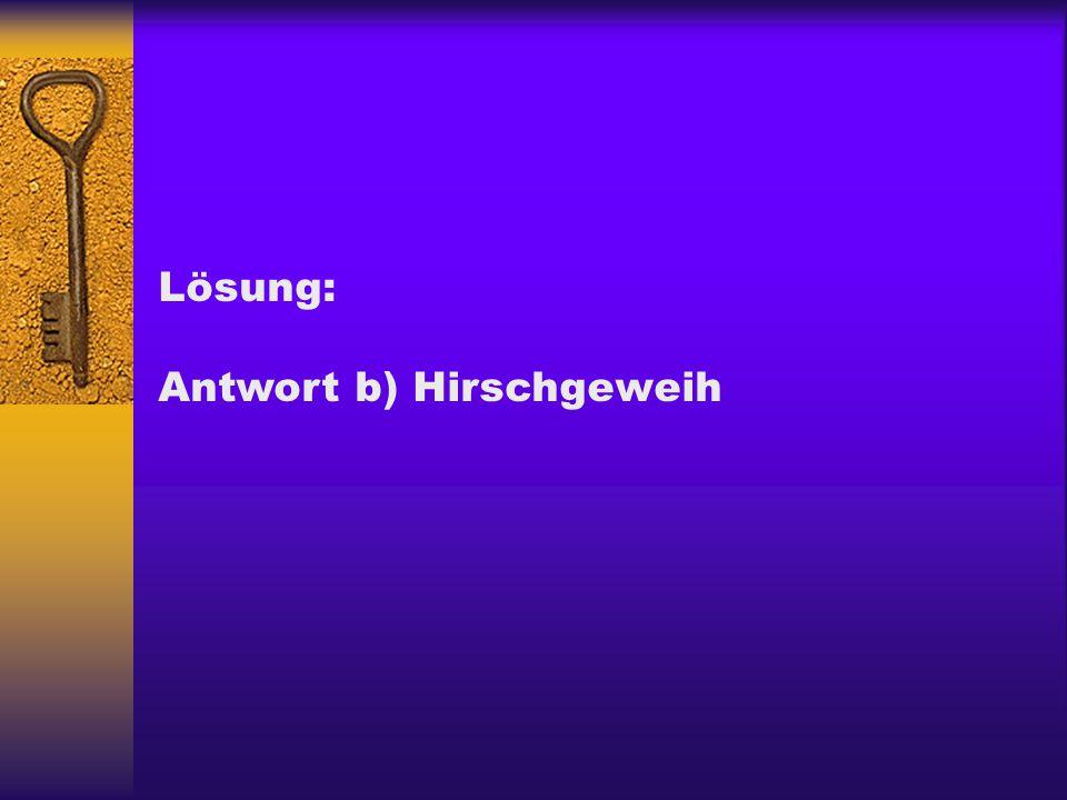 Lösung: Antwort b) Hirschgeweih
